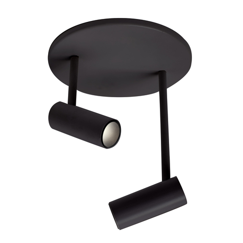 Downey Two Light Adjustable Spot