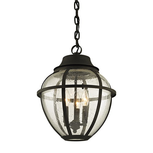 Bunker Hill Outdoor Pendant