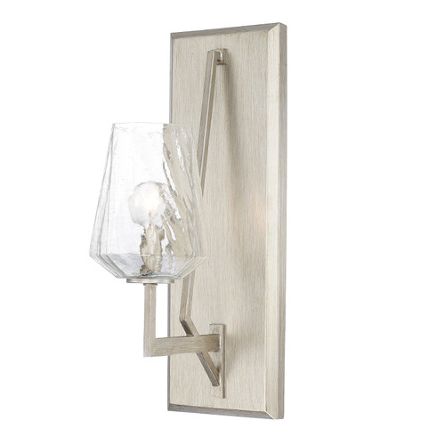 Arden 1-Light Sconce in Brushed Silver with Ice