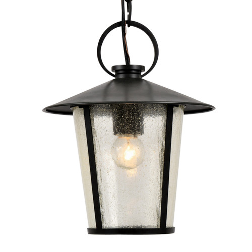 Crystorama Andover Outdoor 1 Light Matte Black Chandelier