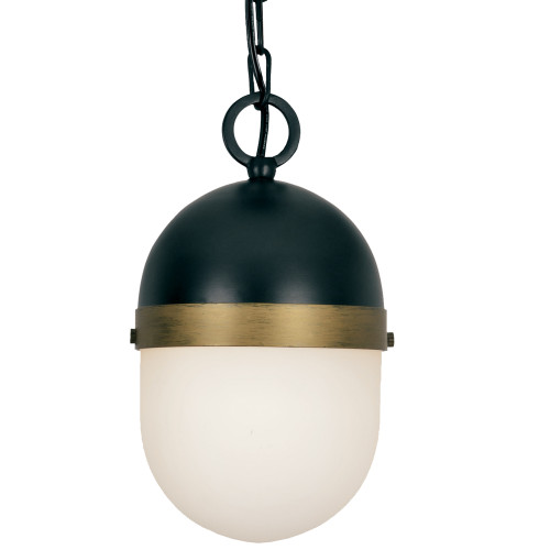 Brian Patrick Flynn for Crystorama Capsule Outdoor 1 Light Pendant