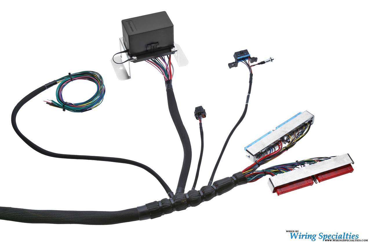 [SCHEMATICS_4NL]  Standalone LS1 Wiring Harness | Wiring Specialties | Custom Ls1 Wiring Harness |  | Wiring Specialties