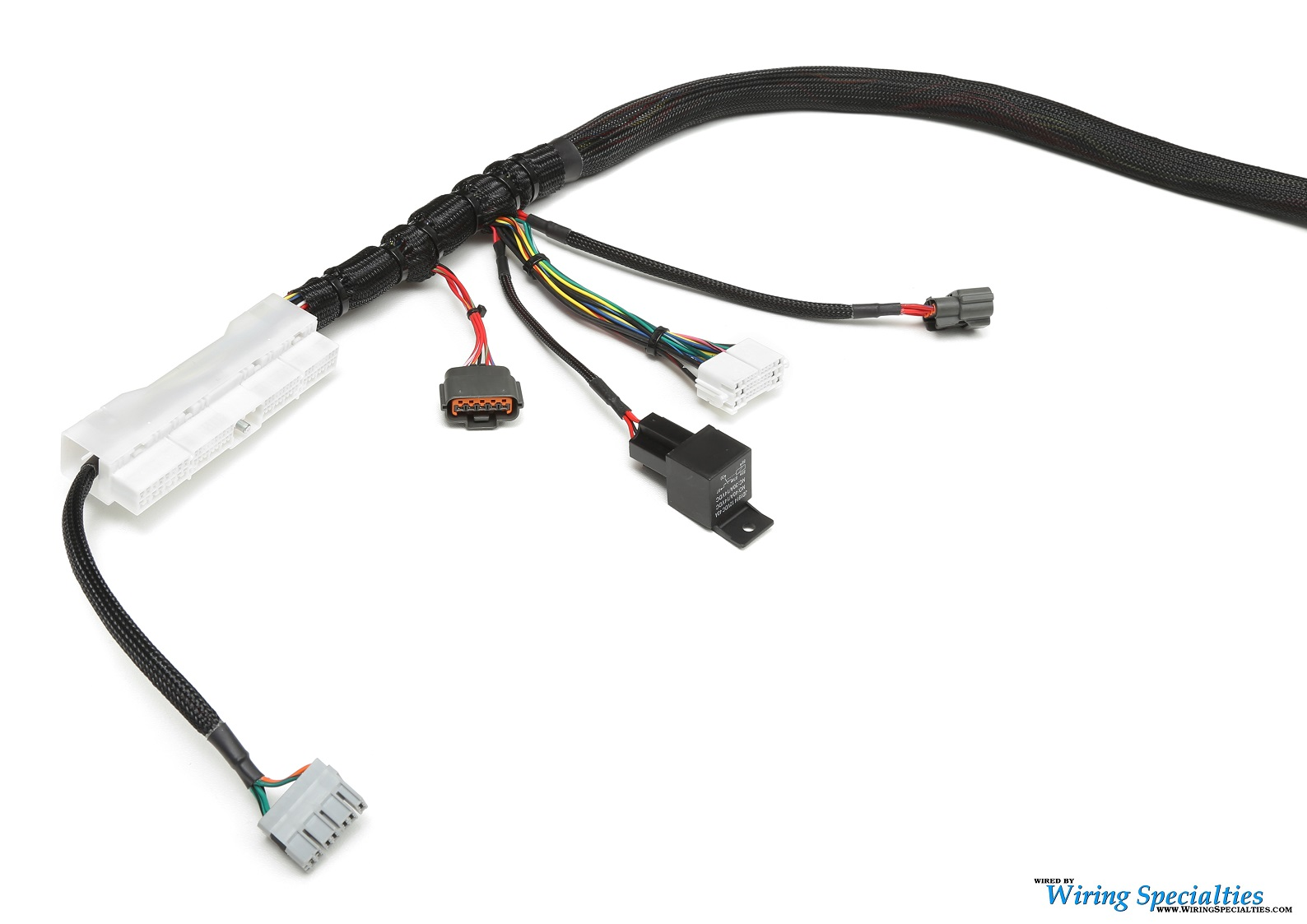 BMW E36 SR20DET Swap Wiring Harness | Wiring Specialties | Tt Auto Wiring Harness Connectors 1311 |  | Wiring Specialties