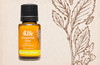 Digestive Blend combines peppermint, fennel, coriander, ginger, caraway, and tarragon essential oils to soothe, relax, and calm your upset stomach.*
