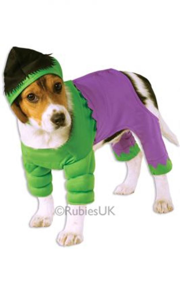 Hulk Pet Costume