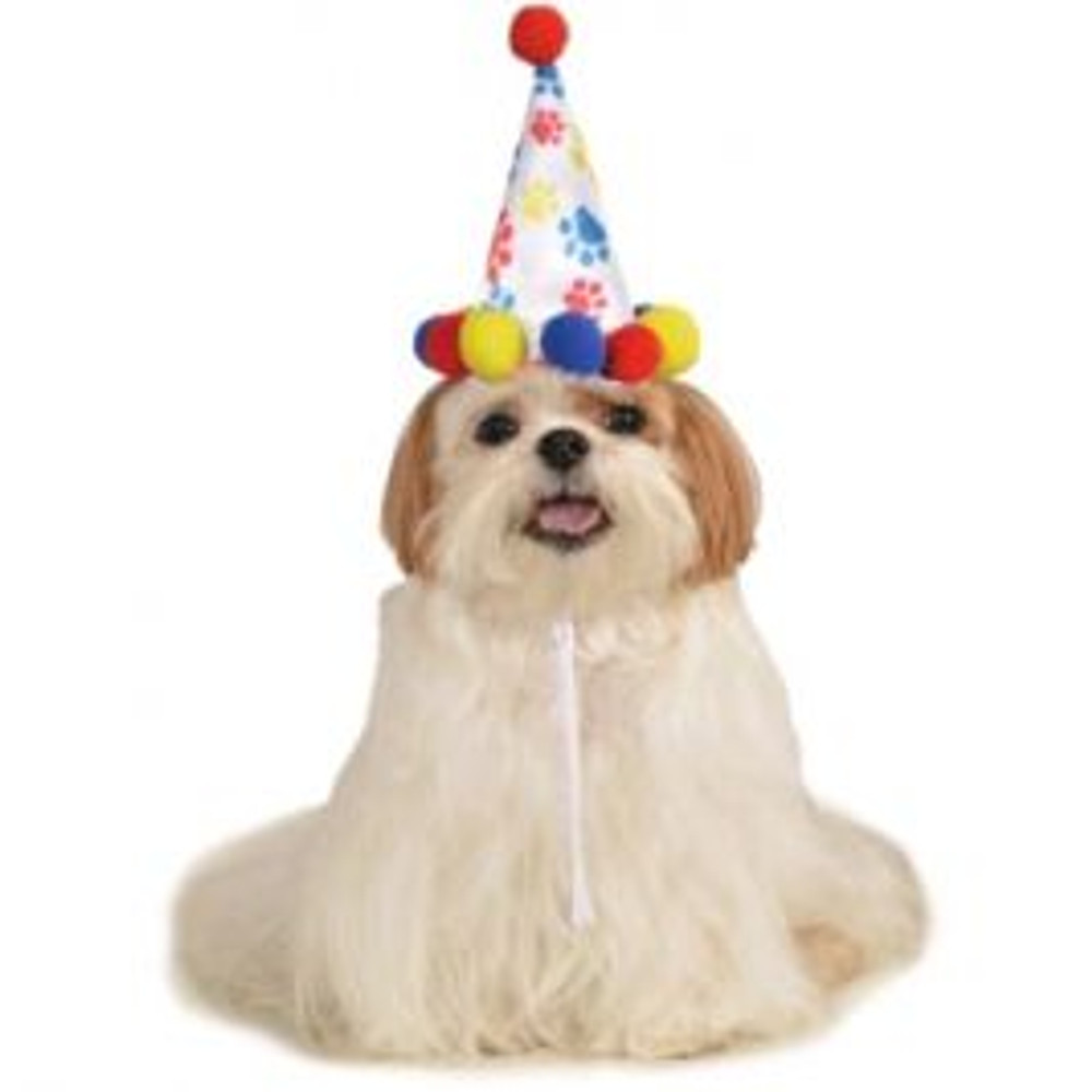 Birthday Pet Hat