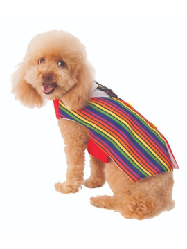 Barkday Vest Dog Costume