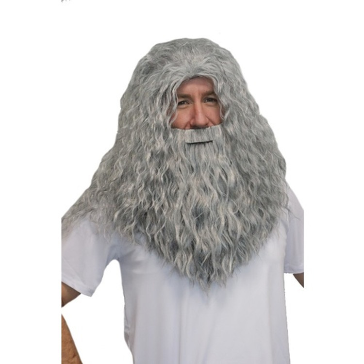 Wizard Grey Beard & Wig Set