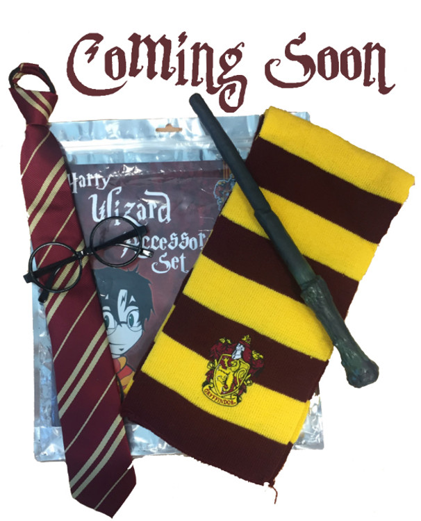 Harry Potter Accessory Set