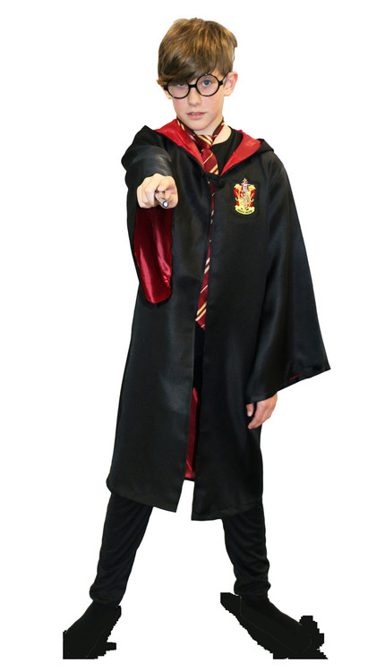 Harry Potter Wizard Child Robe 6-9yrs