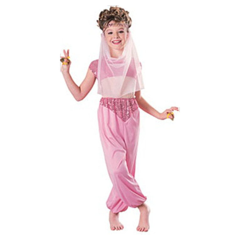 Harem Girls Costume