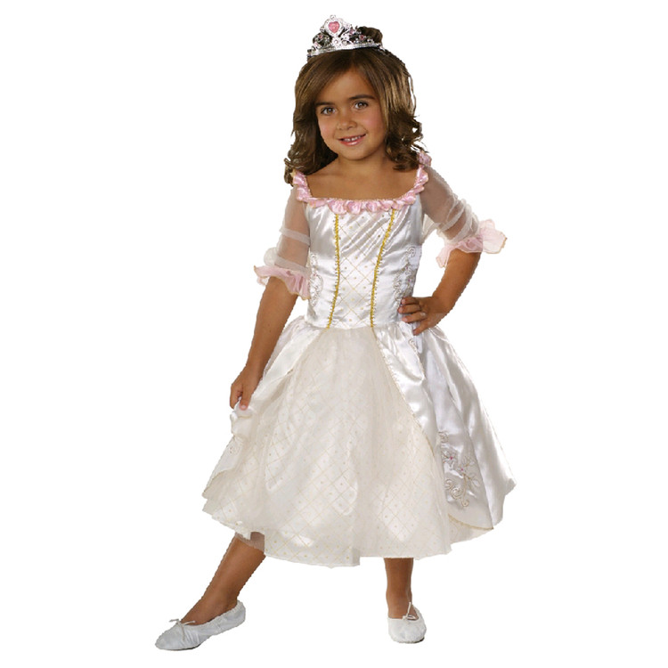 Princess Fairytale Girls/ Toddler Costume