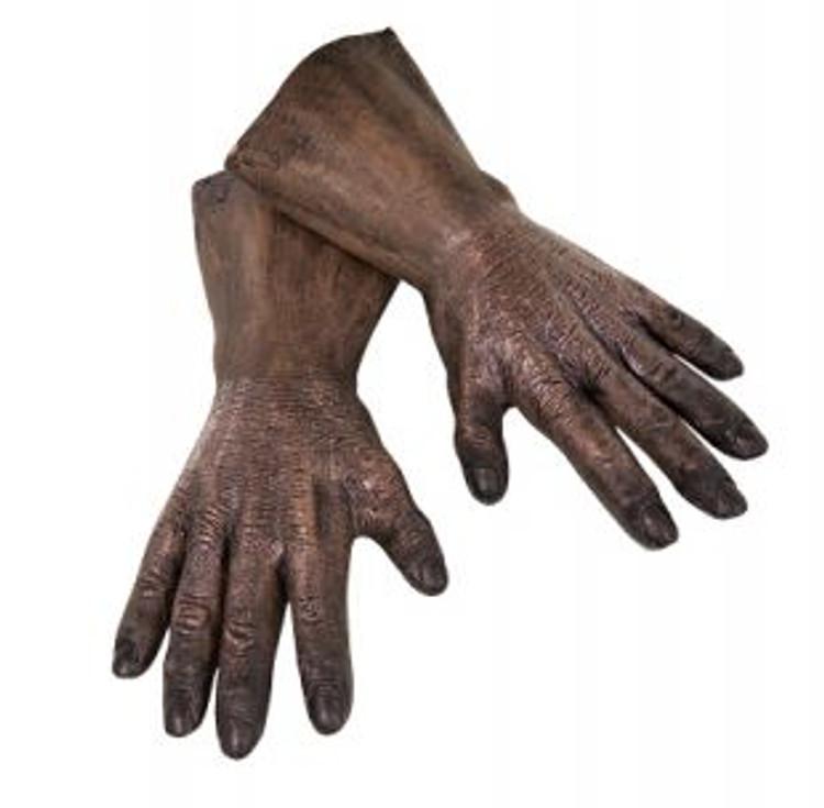 Star Wars - Chewbacca Hands Adult