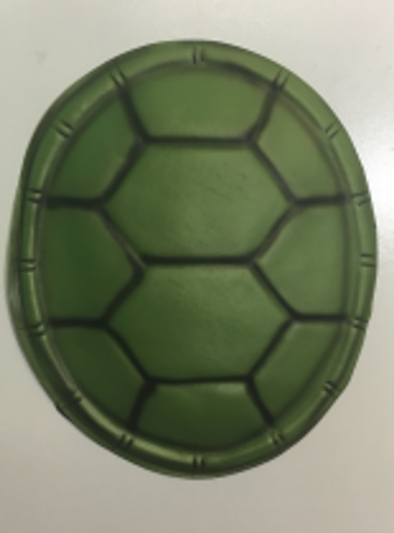 Teenage Mutant Ninja Turtle Shell