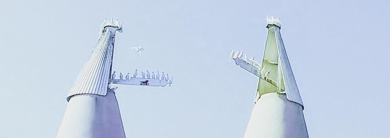 oast-doves.jpg