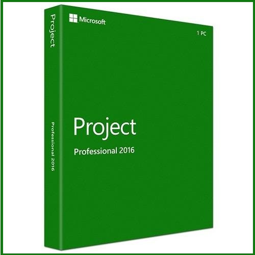 ms project professional 2010 32 bit free download