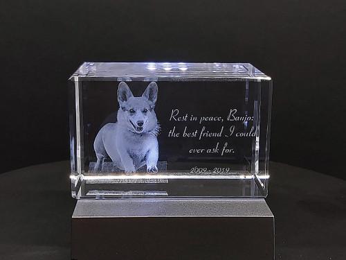 Beautiful pet memorial in 3D crystal