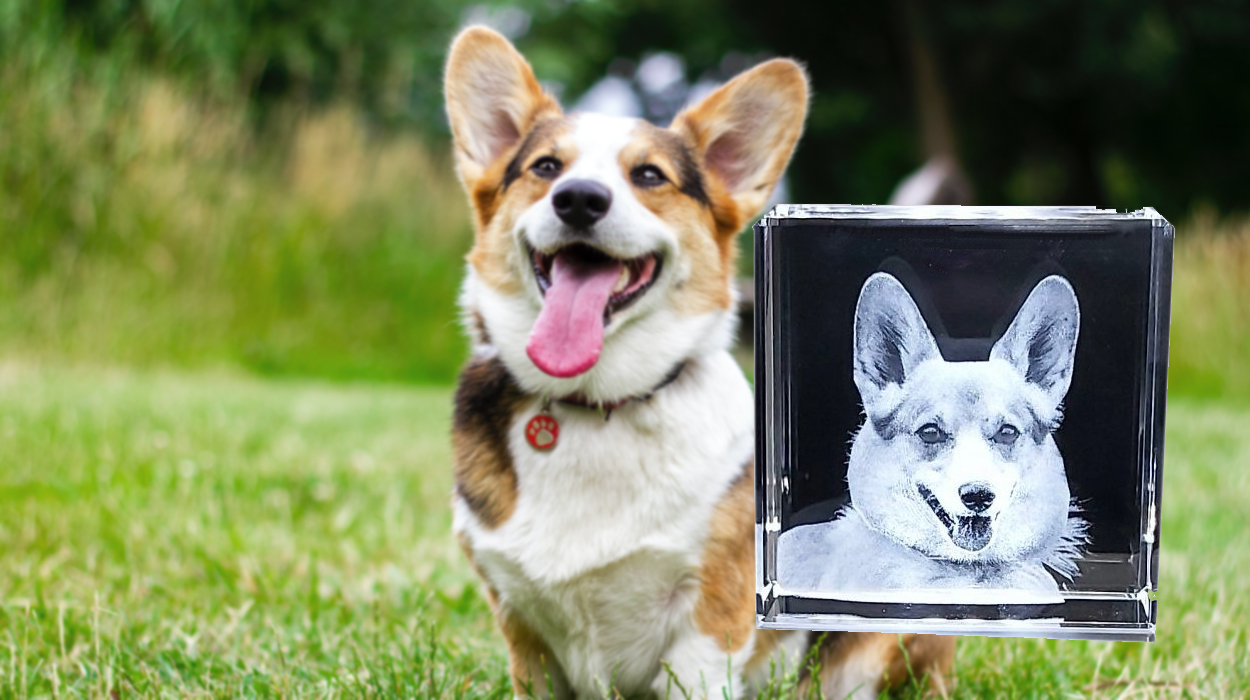 The perfect pet memorial is a 3D crystal