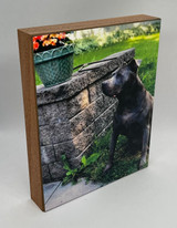 Photo ShoutBox 8x10