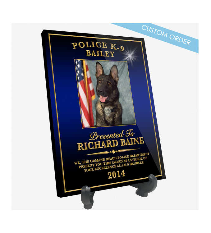 "Patch Plaques can make any Patch, Badge, Seal, Logo or Artwork into a beautiful Wood & Acrylic Desk Plaque.  Cut To Shape! These ""Stunning"" Plaques also come with an Easel stand... Free Shipping and Free Setup!  Government Agencies Sample."