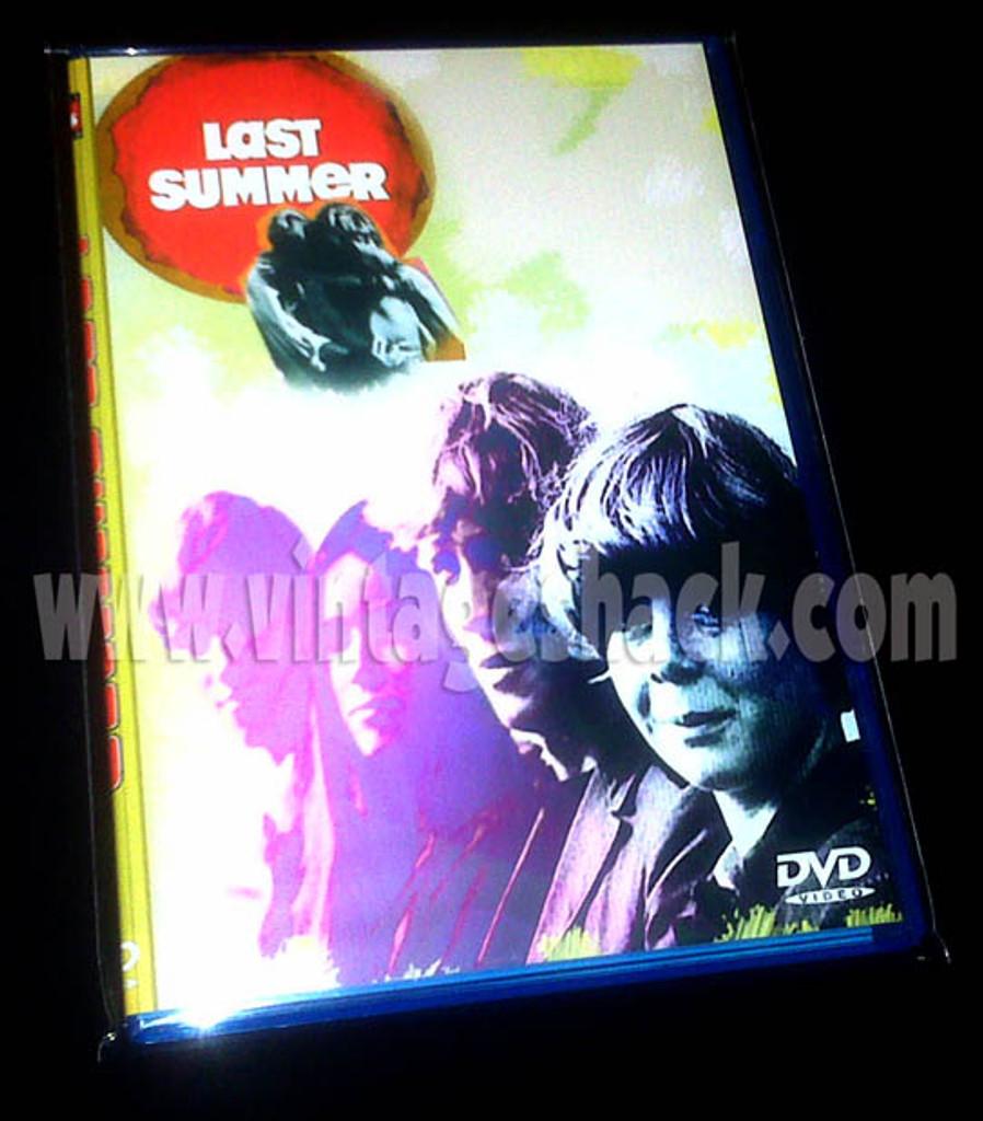 Last Summer DVD Barbara Hershey