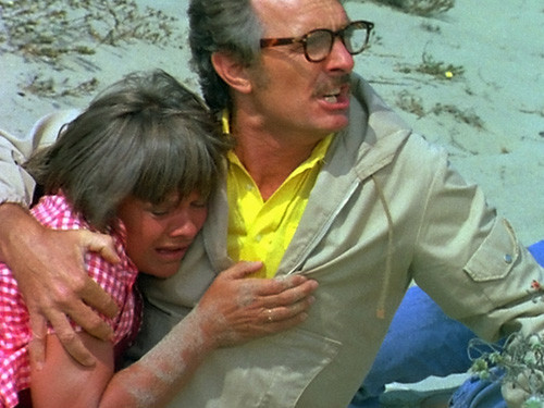 Terror on the Beach DVD Dennis Weaver