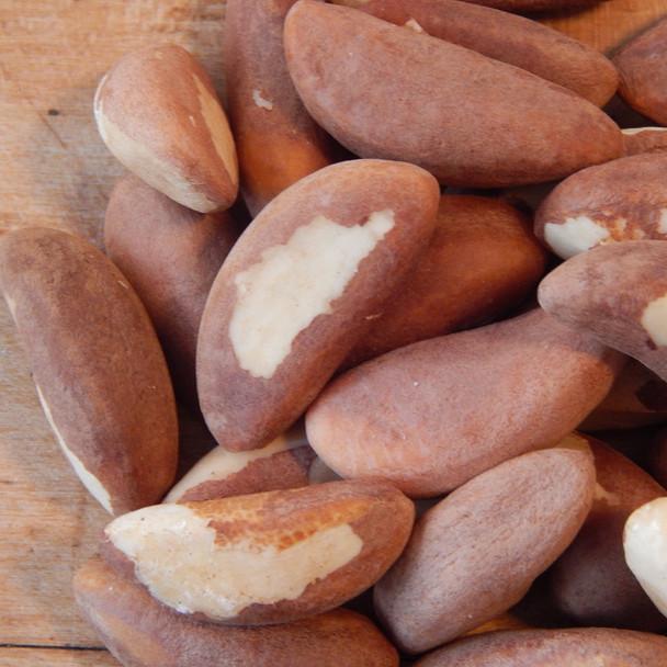 Brazil Nuts 1 lb. bag