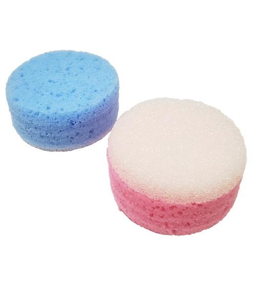 Scrub Sponge Small