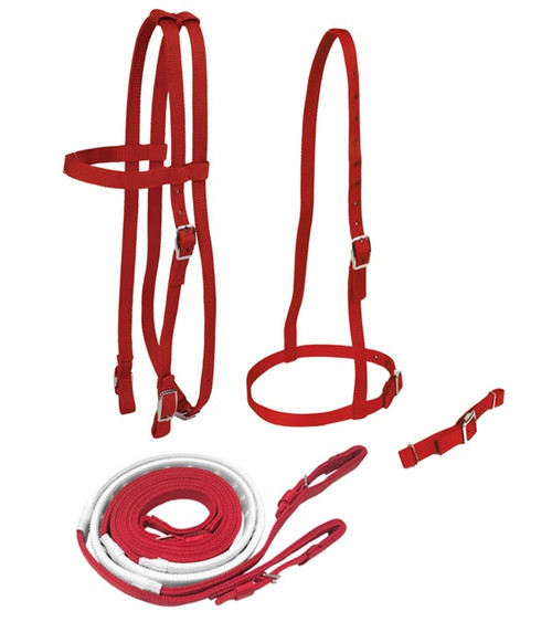 Race Bridle Set with Buckle Reins