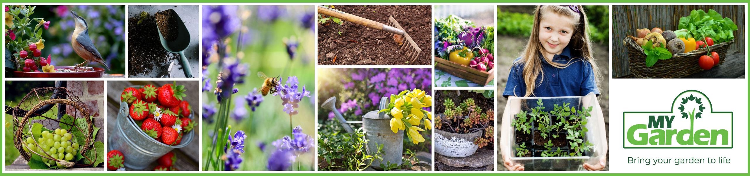 My Garden | Prices Plus
