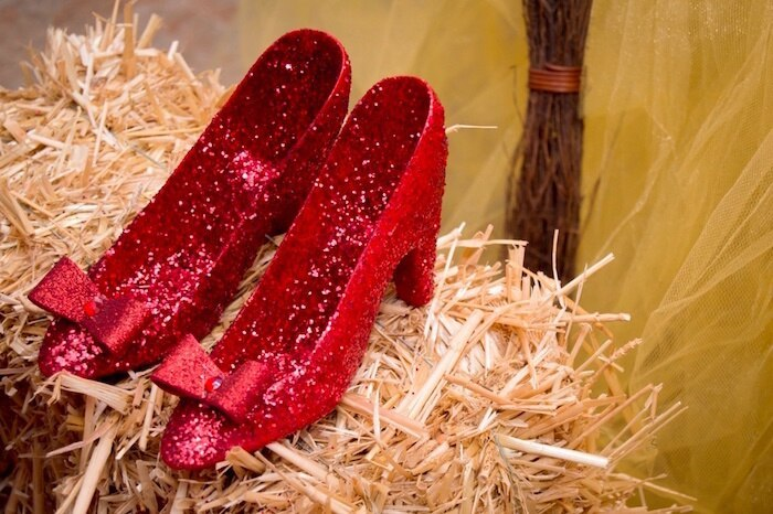 ruby slippers 1st Birthday  Wizard of Oz, Dorothy and Toto custom birthday outfits-party-decor-to-match