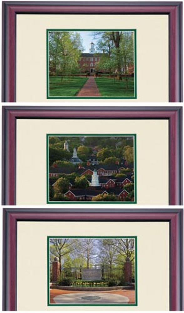 Ohio University Premier Style Diploma Frame for Masters - Photo Options