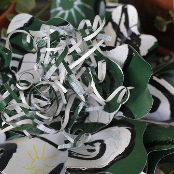 GREEN AND WHITE BOBCAT PASSION FLOWER-MEDIUM