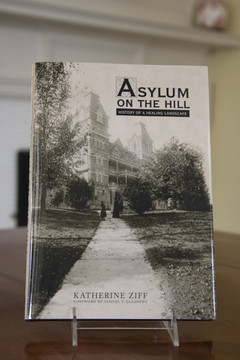 ASYLUM ON THE HILL BOOK