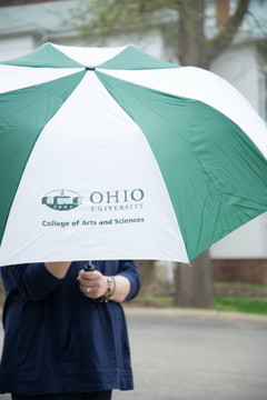 COLLEGE OF ARTS AND SCIENCES UMBRELLA