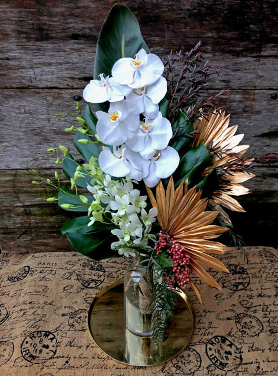White orchids assortment