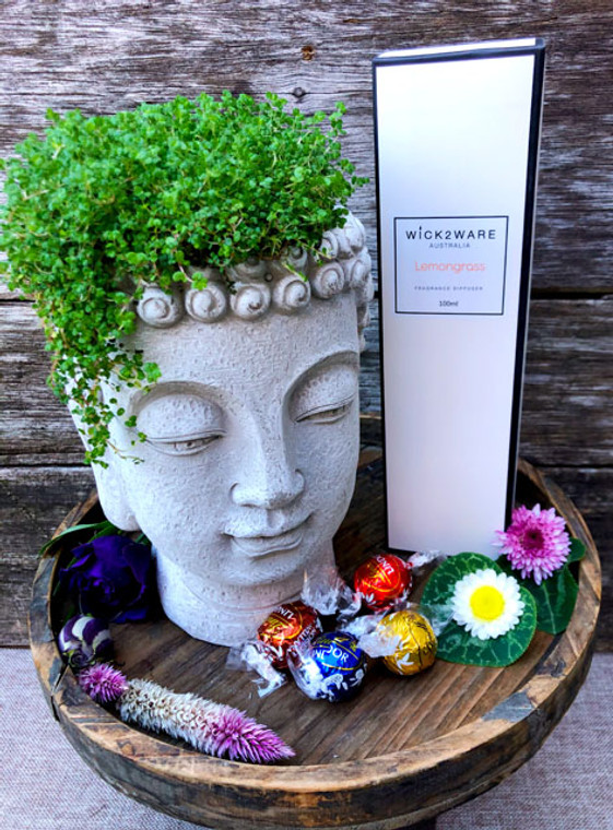 Buddha head cement planter with plant gift set