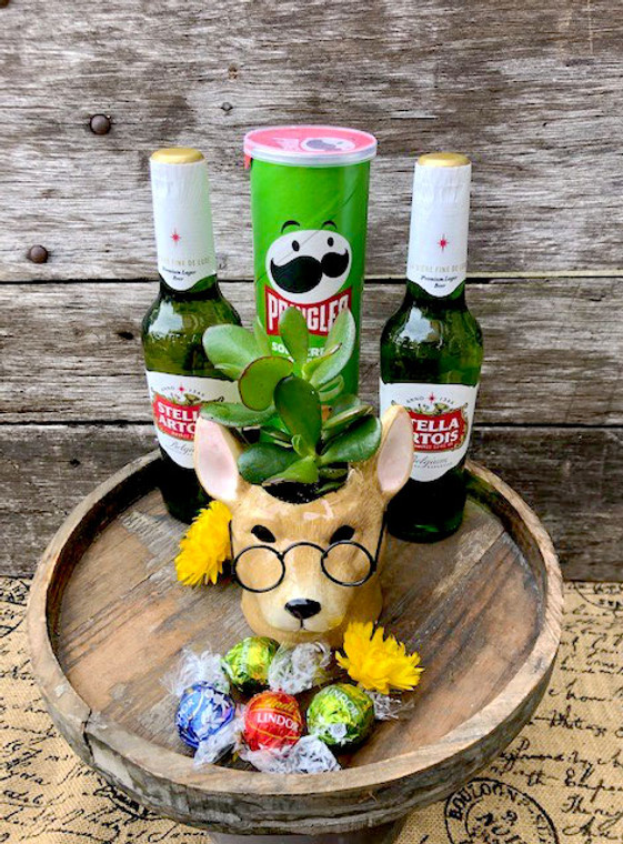 Ceramic Dog head  planter with succulent, beer and snacks.