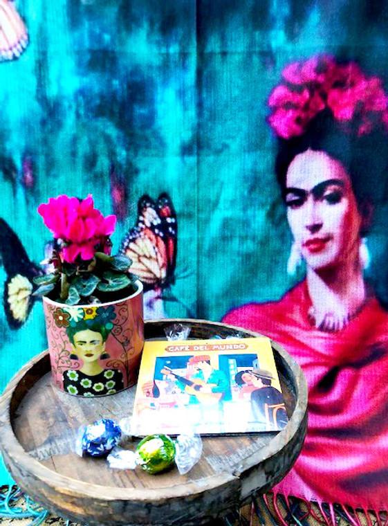 Frida gift set