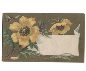Antique Boyd's Medicated Conserves #5 Medicine Remedy Victorian Trade Card