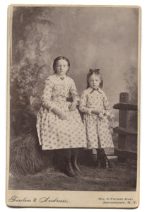Antique Cabinet Card Photograph Faux Outdoor Photo Fence Prop - Jamestown, NY