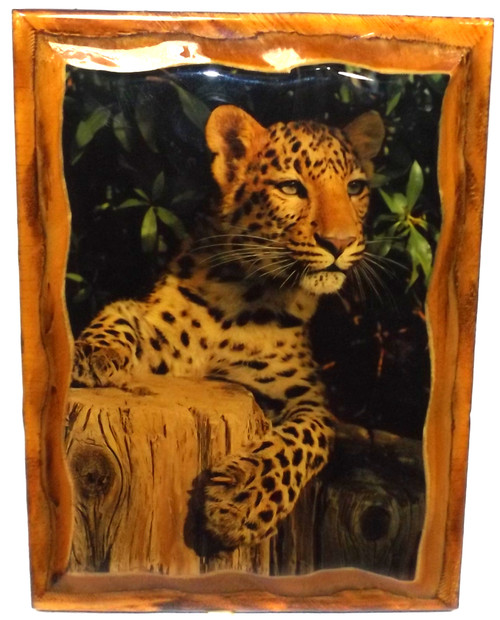 Vintage Retro Shellacked Wood Plaque with Cheetah Photo Rustic Wall Decor