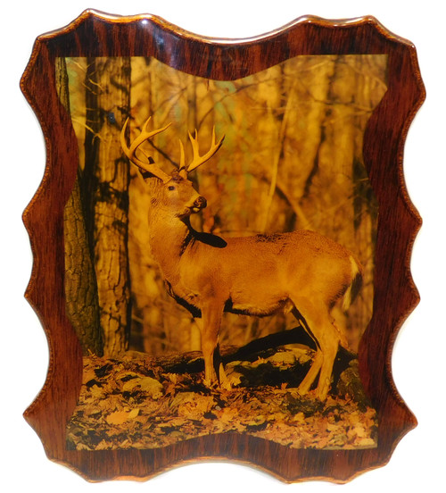 Vintage Retro Shellacked Wood Plaque with Whitetail Buck Deer Photo Wall Decor