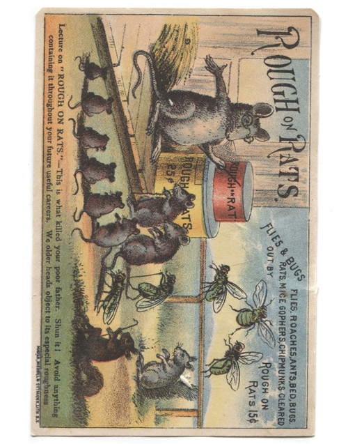 Antique Rough on Rats Cartoon Lecture Poison Advertising Victorian Trade Card