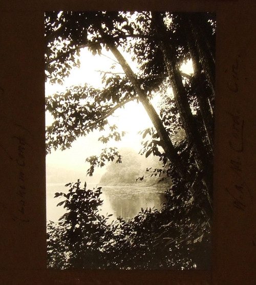 Photograph of Lake from Under Trees William A. McCord Glass Magic Lantern Slide