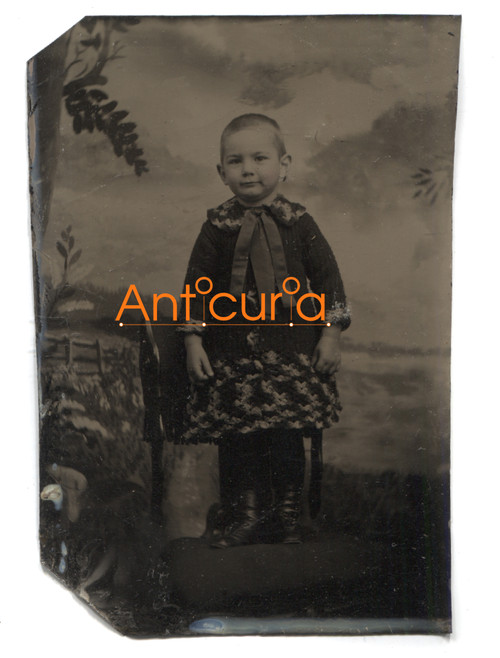 Antique Tintype Photo Named Photograph of Young Boy in Dress Harry Wescott