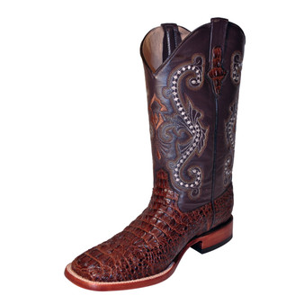 Ferrini Print Caiman Crocodile Brown