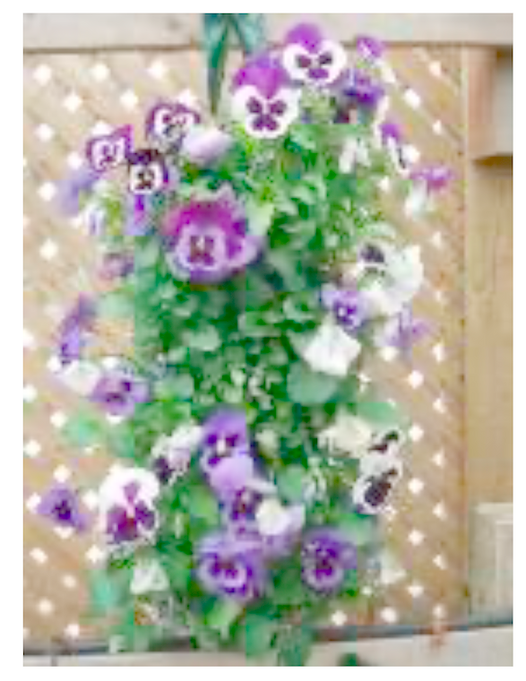Flower Slit Pouches