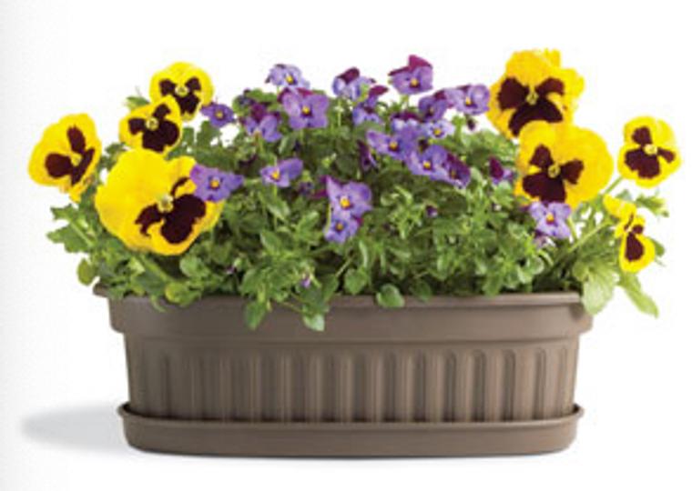 Oval Decorative Planter
