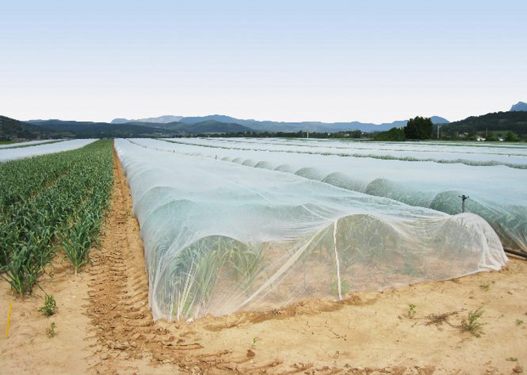 ProtekNet Insect Netting 25 gram